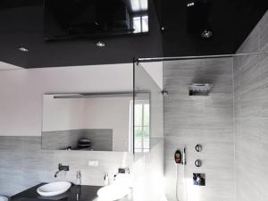 Натяжные потолки для туалета