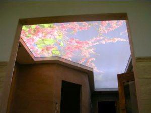 Светопрозрачные натяжные потолки 10